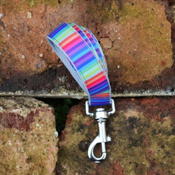 Handmade Rainbow Stripe Dog Lead (Gay Pride)