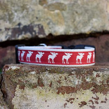Rudolph the Red Dog Collar, Handmade Rudolph the Red, Christmas, Dog Collar, Reindeer, handmade