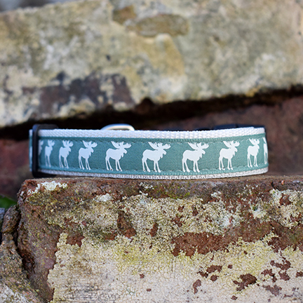 Rudolph the Green Dog Collar, dog accessories, Handmade, Rudolph the Green, Christmas Dog Collar, Reindeer