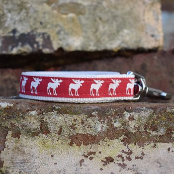 Handmade Rudolph the Red Christmas Dog Lead (Reindeer)