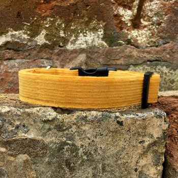 Handmade, dog collar, dog accessories, corduroy, yellow