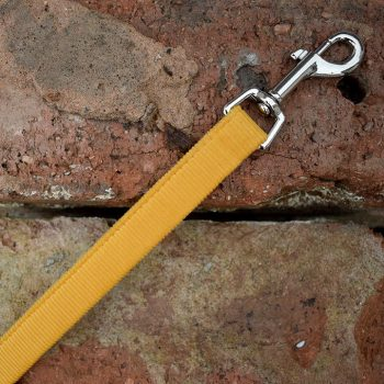 Dog Lead, Handmade, Yellow, Mustard Corduroy, Dog Accessories