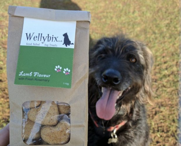Wellybix, dog treats, Otis Grumbles, Dog Blog