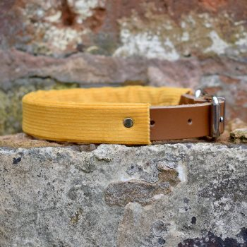 handmade, dog collar, dog accessories, leather, corduroy, yellow, mustard