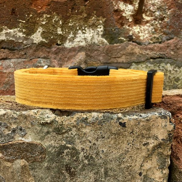 Mustard Corduroy Dog Collar, yellow, mustard, spring range, handmade, dog collar, corduroy collar, dog accessories